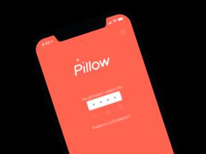 Krásná, chytrá a pracovitá. Pillow aplikace.